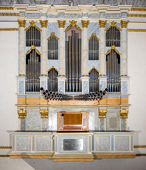 organo-catedral