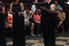 coro-amystis-2015-2